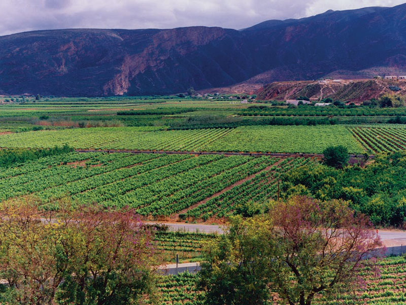 Picture of Calitzdorp